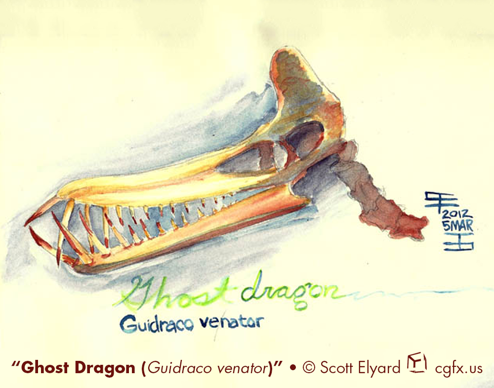 Watercolor study of Guidraco venator skull.